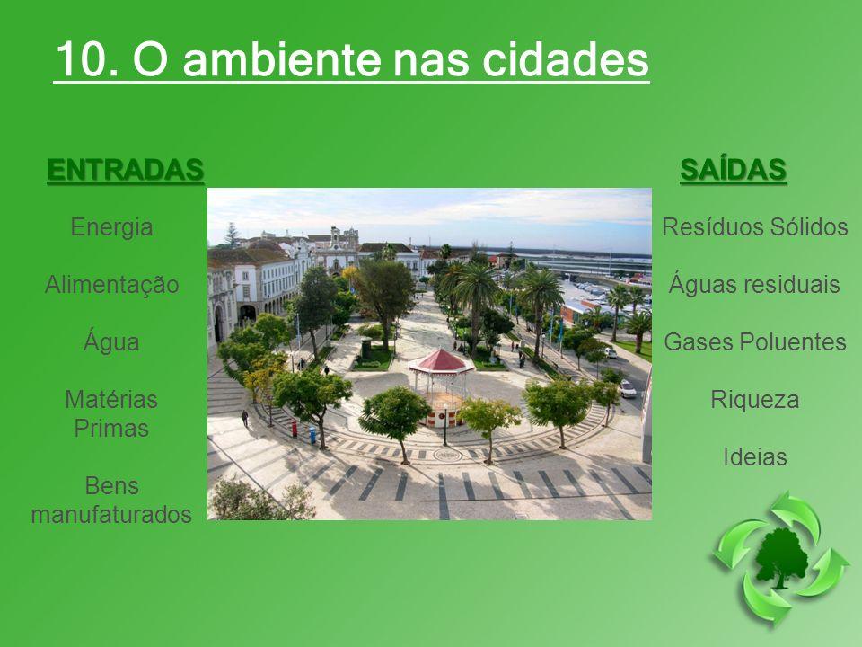 10. O ambiente nas cidades ENTRADAS SAÍDAS Energia Alimentação Água