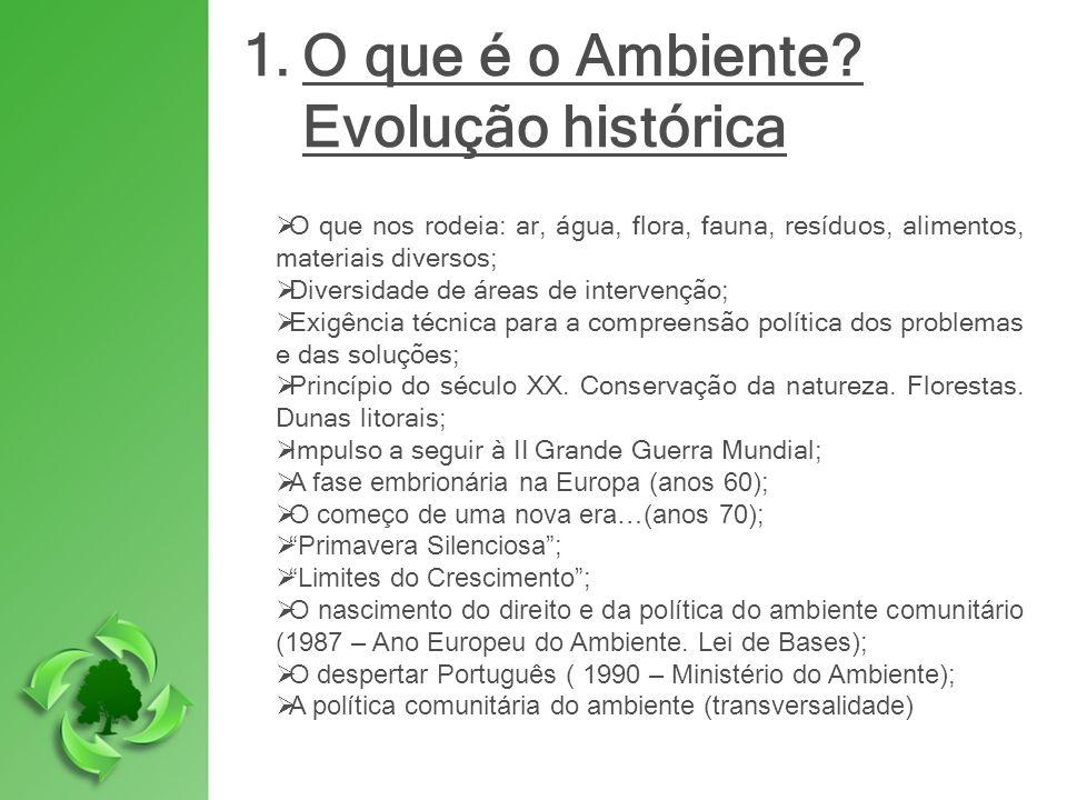 O que é o Ambiente Evolução histórica