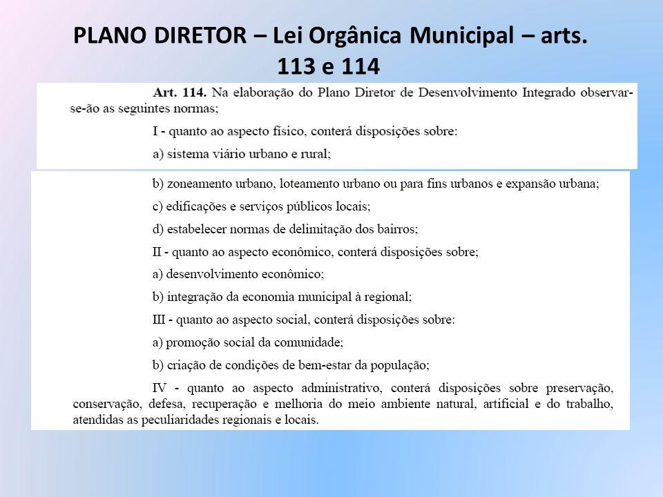 PLANO DIRETOR – Lei Orgânica Municipal – arts. 113 e 114