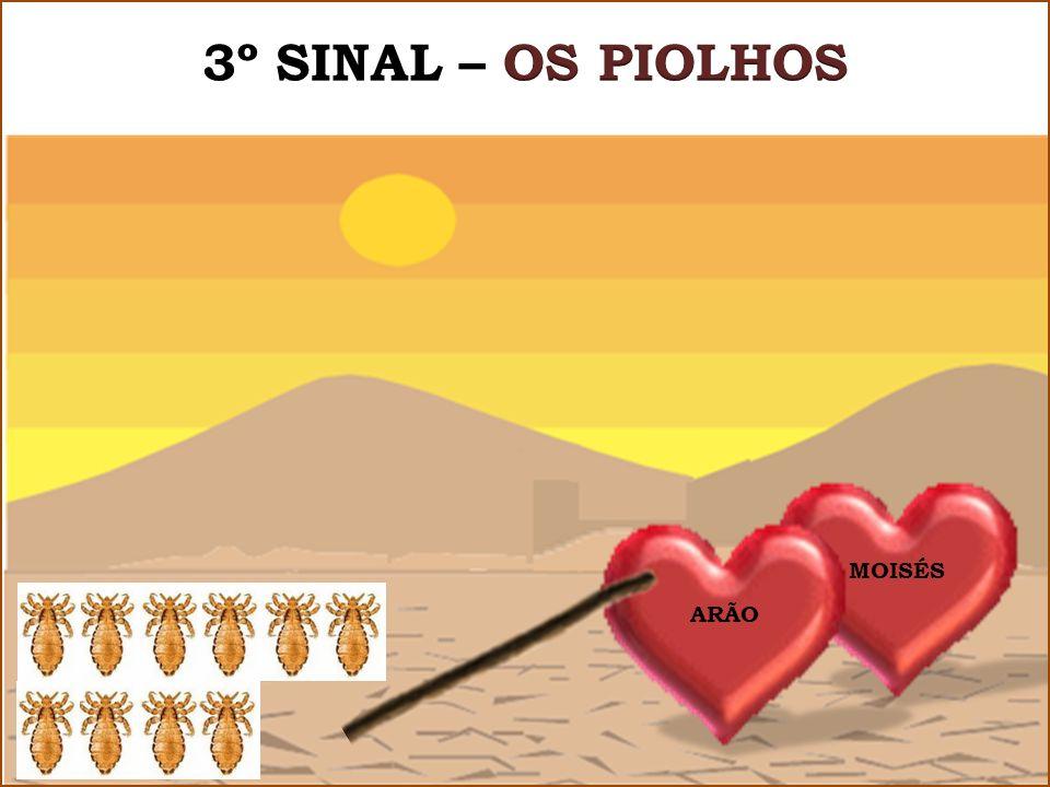 3º SINAL – OS PIOLHOS MOISÉS ARÃO