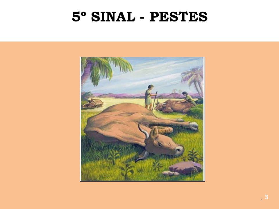 5º SINAL - PESTES 3
