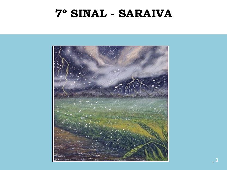 7º SINAL - SARAIVA 3