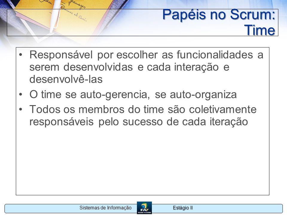 Papéis no Scrum: Time Responsável por escolher as funcionalidades a serem desenvolvidas e cada interação e desenvolvê-las.