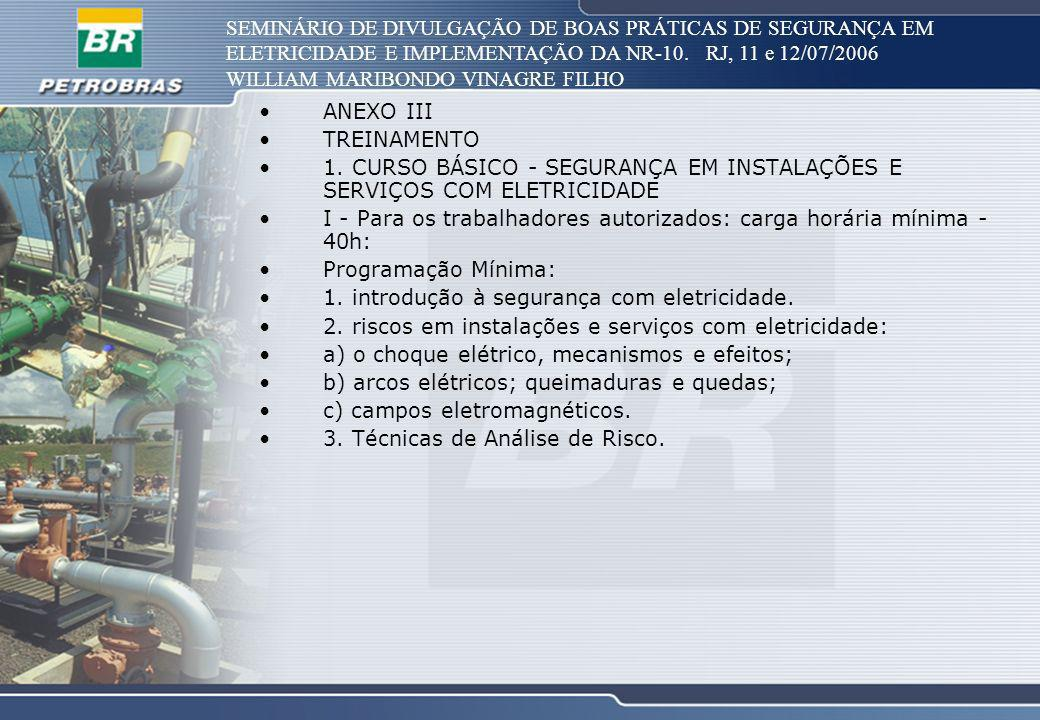 SEMINÁRIO DE DIVULGAÇÃO DE BOAS PRÁTICAS DE SEGURANÇA EM ELETRICIDADE E IMPLEMENTAÇÃO DA NR-10. RJ, 11 e 12/07/2006