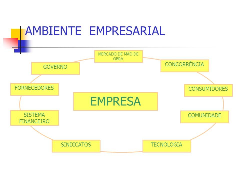 AMBIENTE EMPRESARIAL EMPRESA CONCORRÊNCIA GOVERNO FORNECEDORES