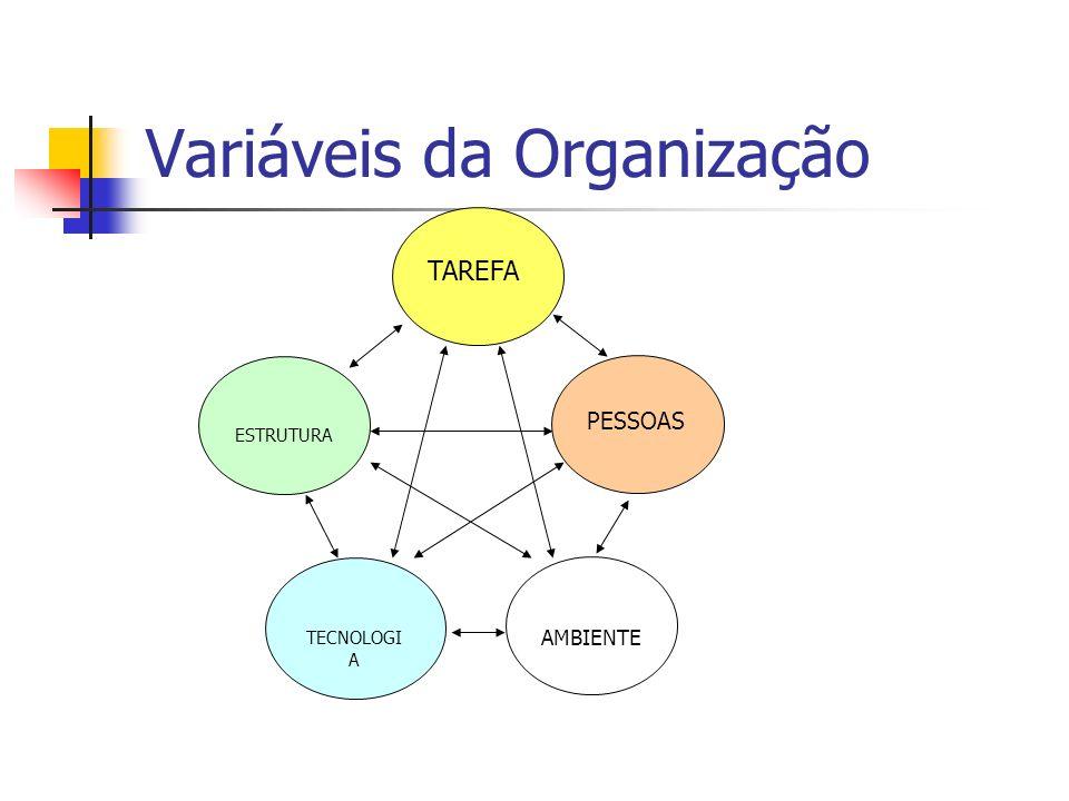 Variáveis da Organização