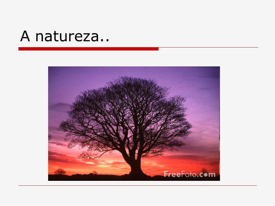 A natureza..