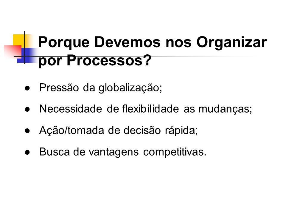 Porque Devemos nos Organizar por Processos