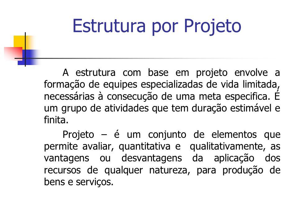 Estrutura por Projeto
