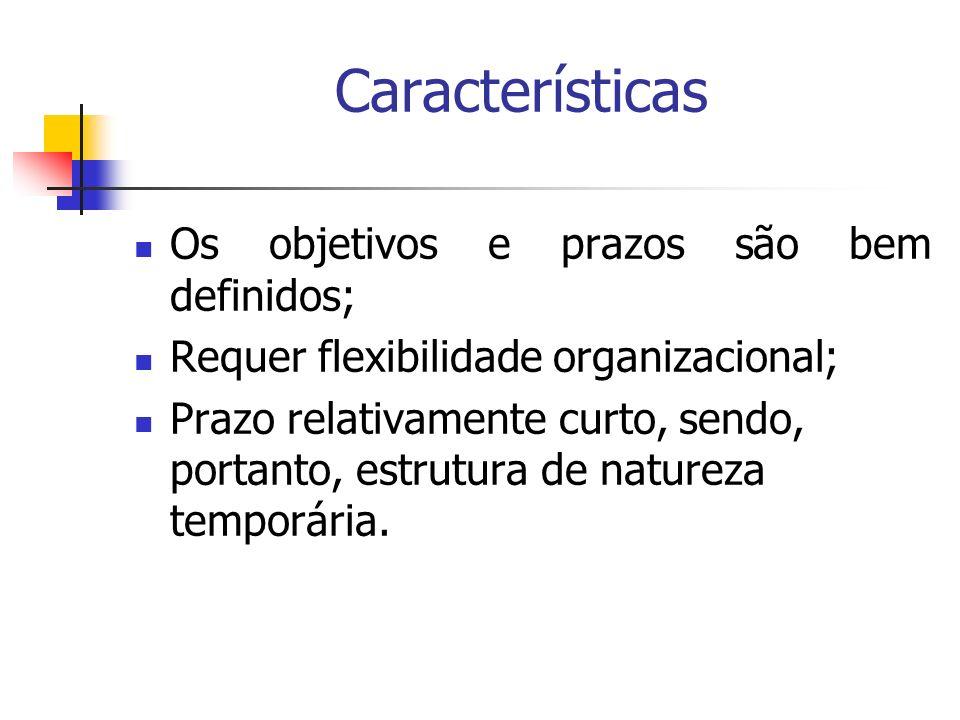 Características Os objetivos e prazos são bem definidos;