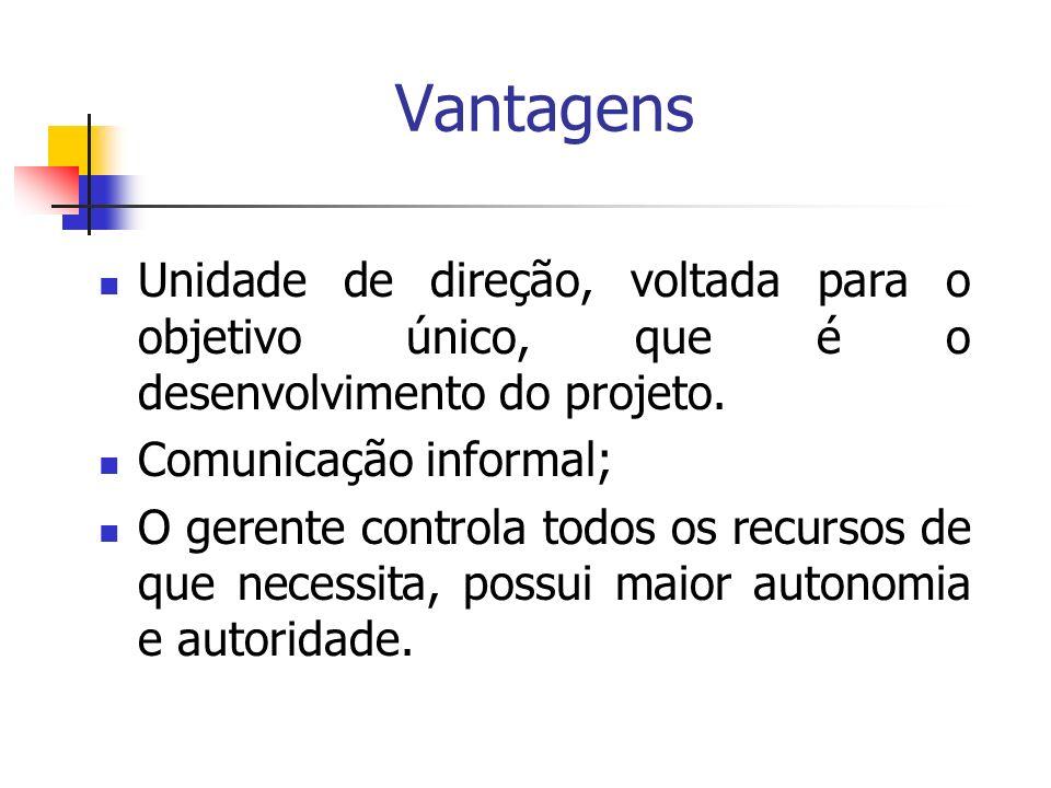 Vantagens Unidade de direção, voltada para o objetivo único, que é o desenvolvimento do projeto. Comunicação informal;