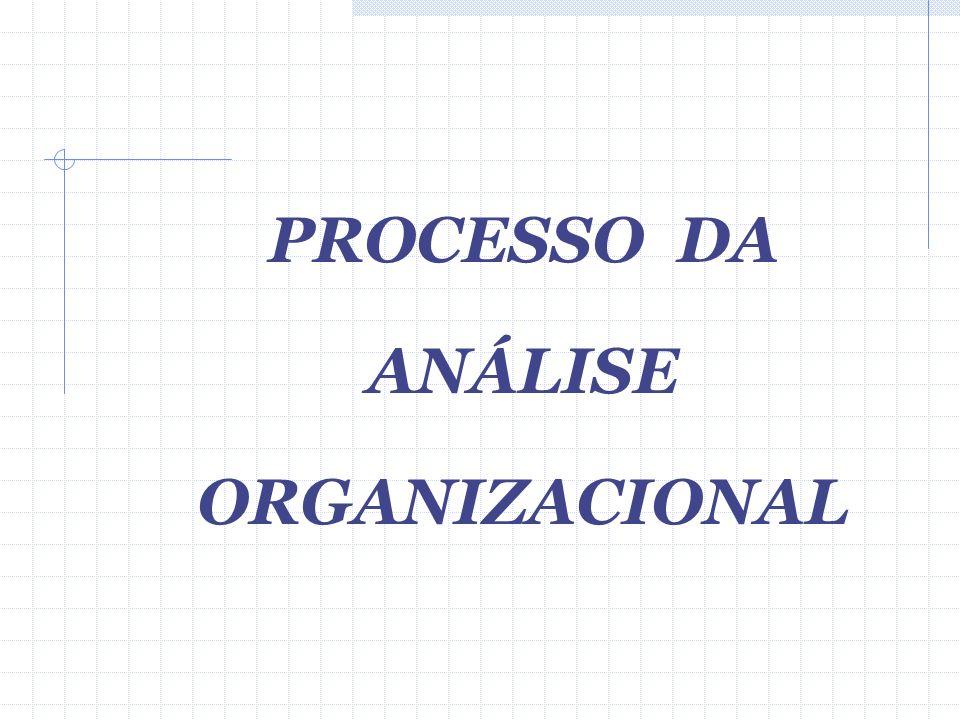 PROCESSO DA ANÁLISE ORGANIZACIONAL