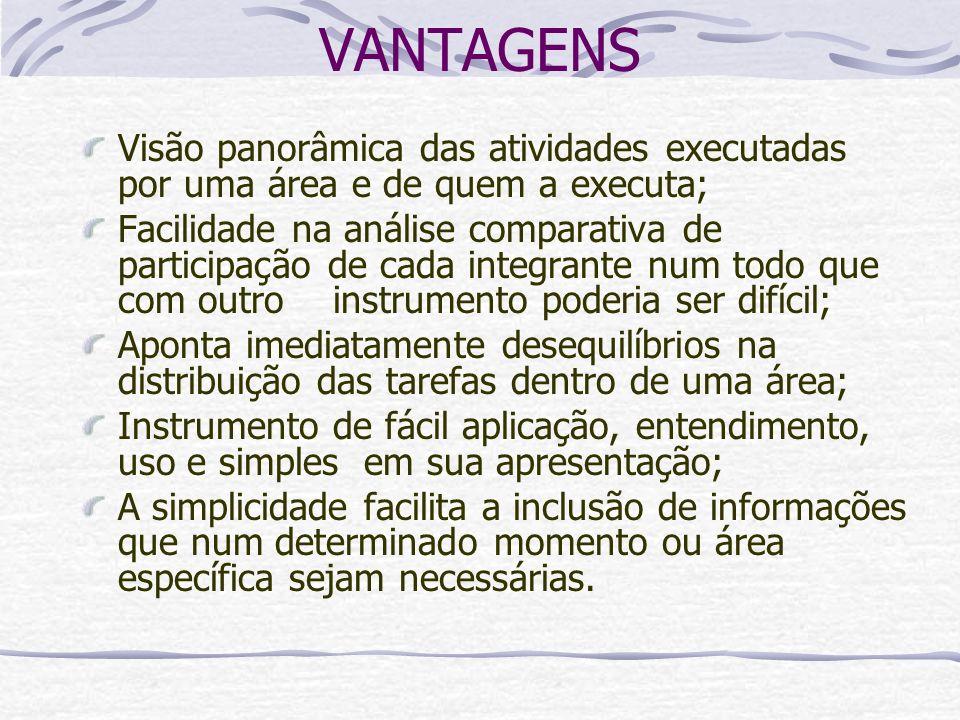 VANTAGENS Visão panorâmica das atividades executadas por uma área e de quem a executa;