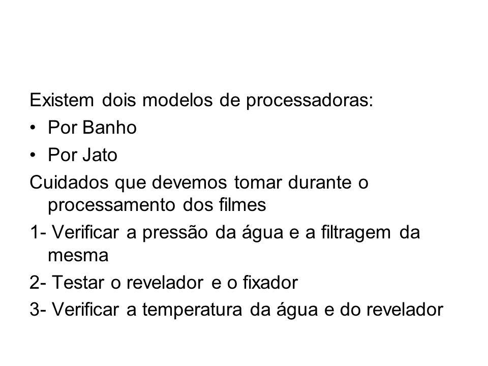 Existem dois modelos de processadoras: