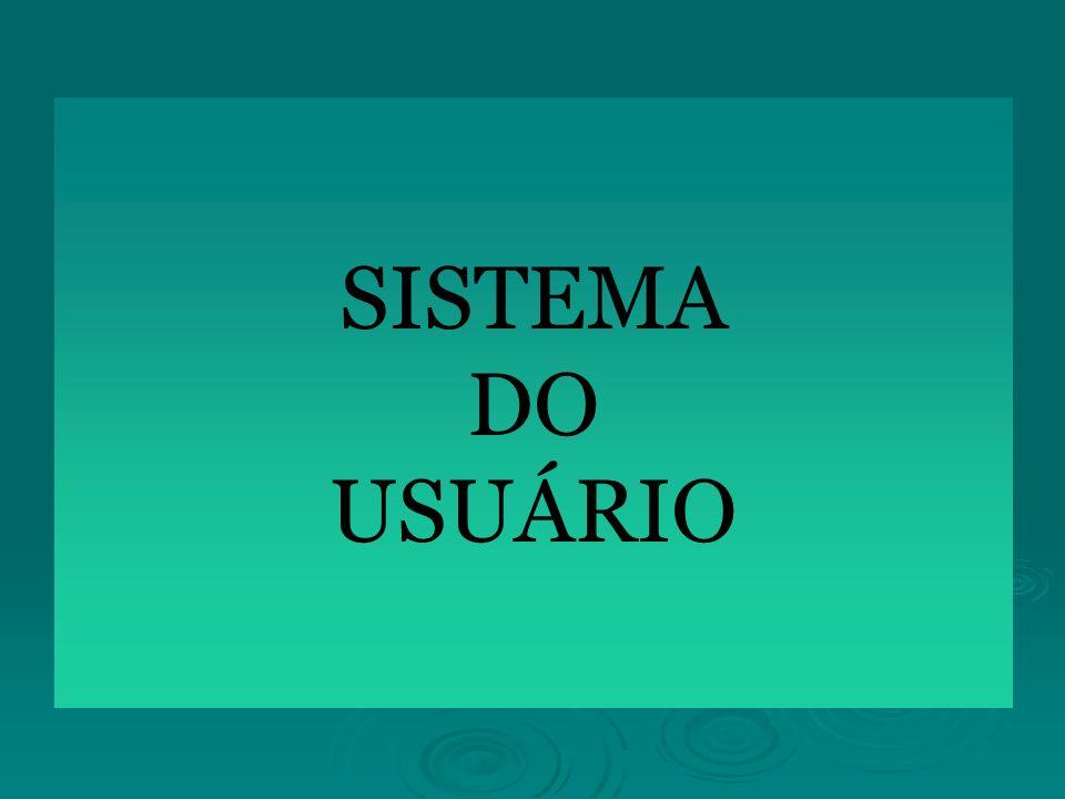 SISTEMA DO USUÁRIO