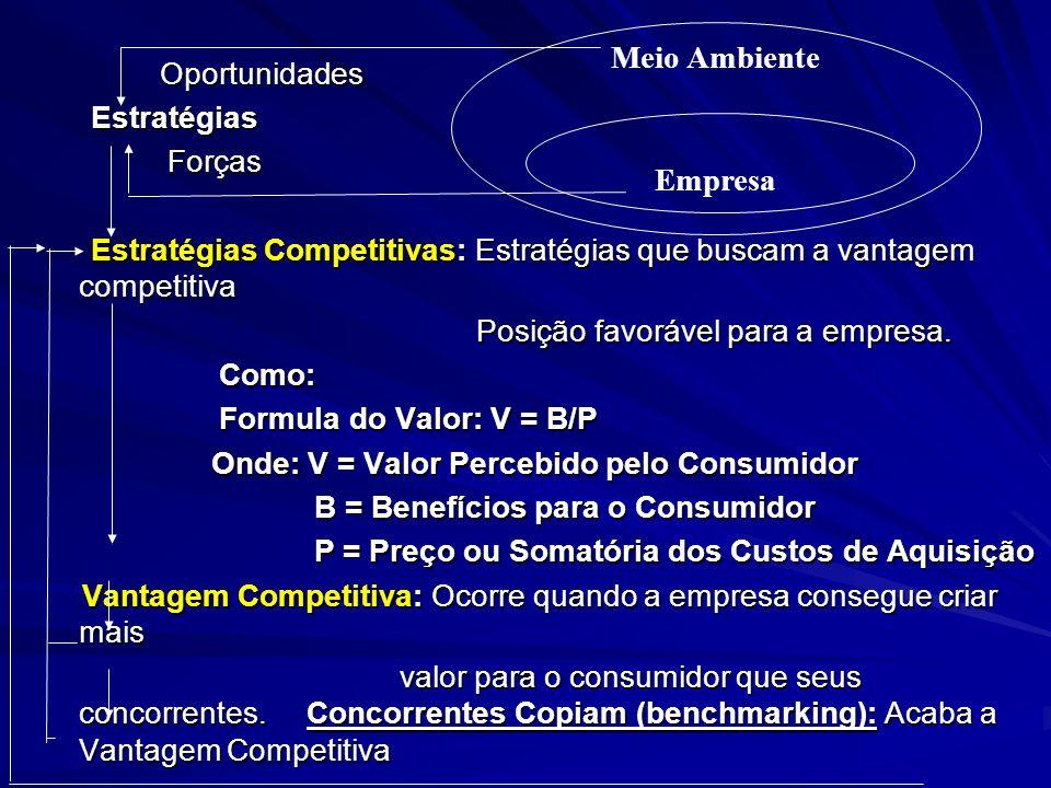 Meio Ambiente Empresa Oportunidades Estratégias Forças