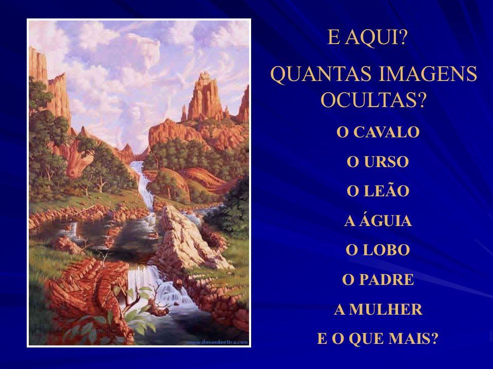 QUANTAS IMAGENS OCULTAS