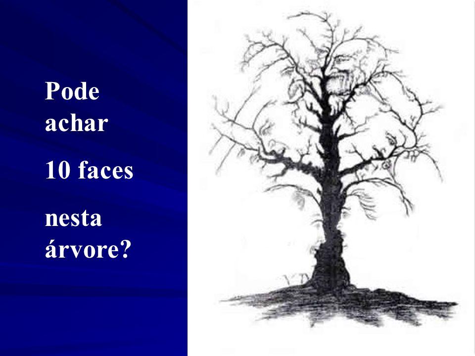 Pode achar 10 faces nesta árvore