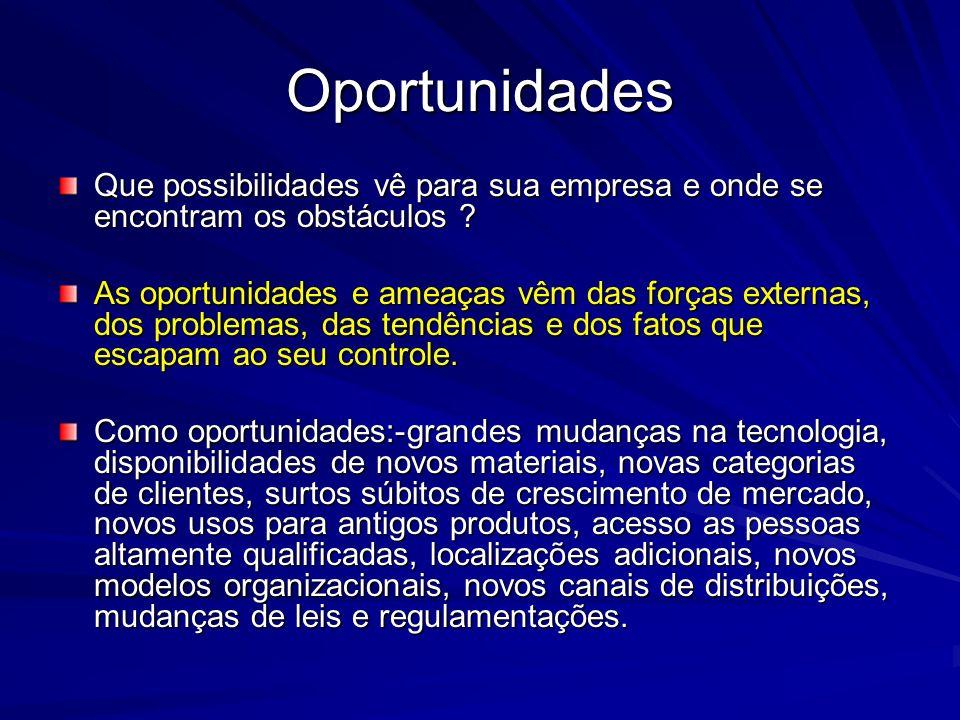 Oportunidades Que possibilidades vê para sua empresa e onde se encontram os obstáculos