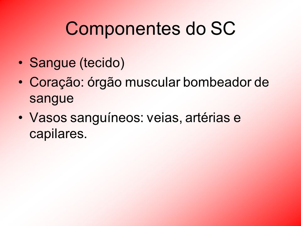Componentes do SC Sangue (tecido)