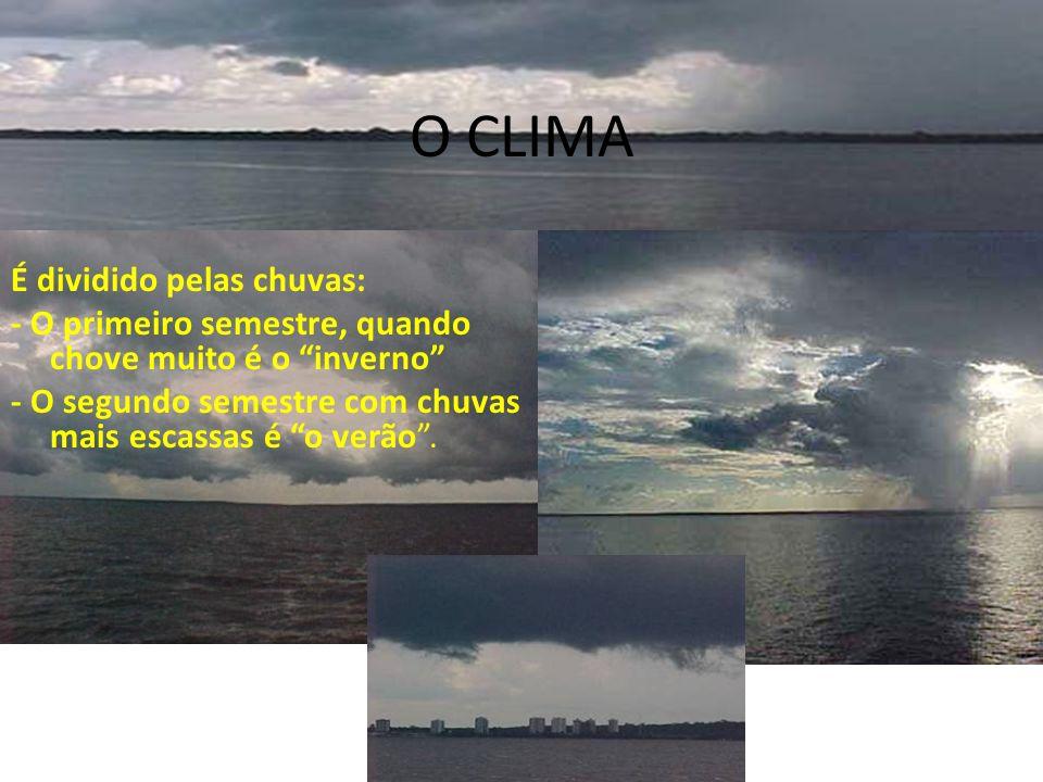 O CLIMA É dividido pelas chuvas: