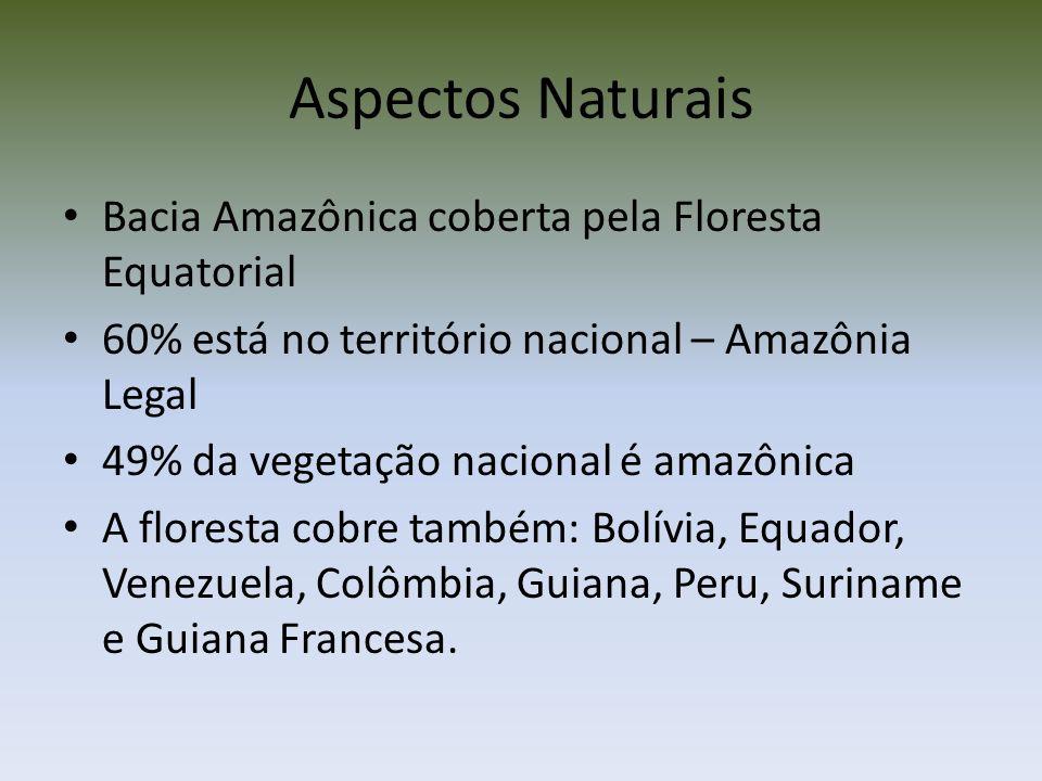 Aspectos Naturais Bacia Amazônica coberta pela Floresta Equatorial