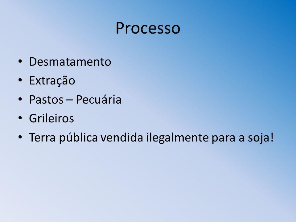 Processo Desmatamento Extração Pastos – Pecuária Grileiros
