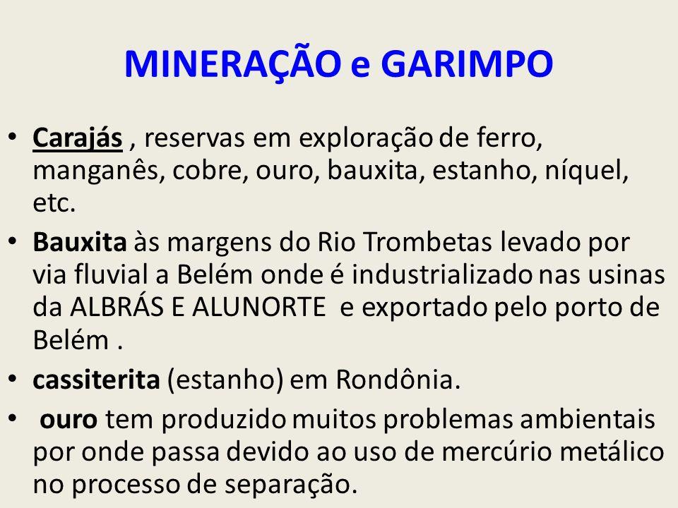 MINERAÇÃO e GARIMPO Carajás , reservas em exploração de ferro, manganês, cobre, ouro, bauxita, estanho, níquel, etc.