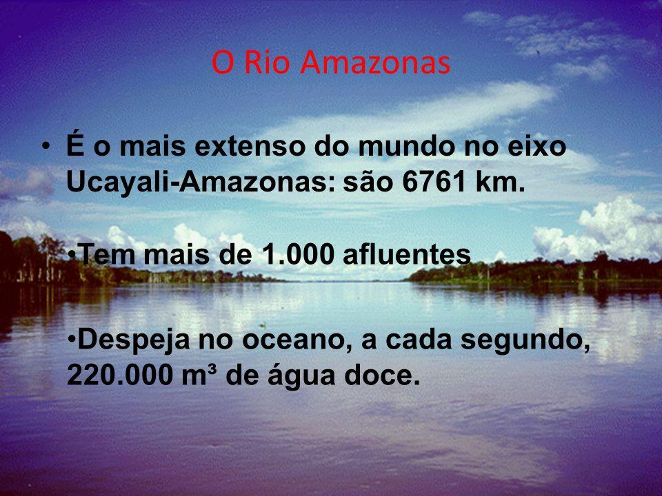 O Rio Amazonas É o mais extenso do mundo no eixo Ucayali-Amazonas: são 6761 km. Tem mais de 1.000 afluentes.