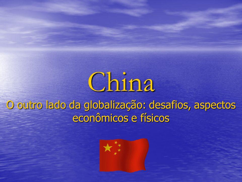 O outro lado da globalização: desafios, aspectos econômicos e físicos
