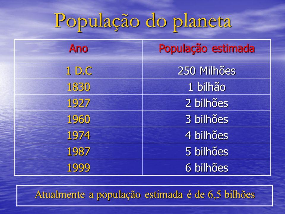 Atualmente a população estimada é de 6,5 bilhões
