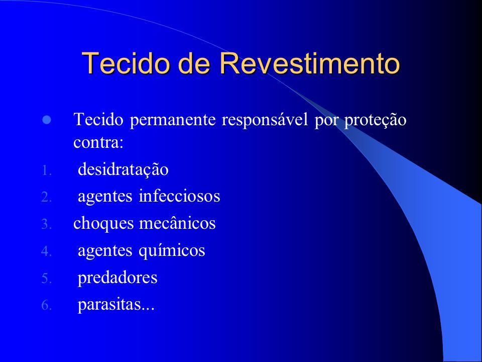 Tecido de Revestimento
