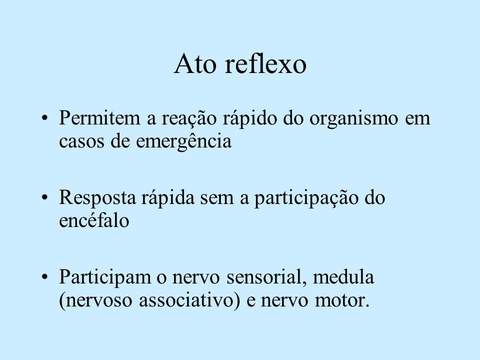 Ato reflexo Permitem a reação rápido do organismo em casos de emergência. Resposta rápida sem a participação do encéfalo.