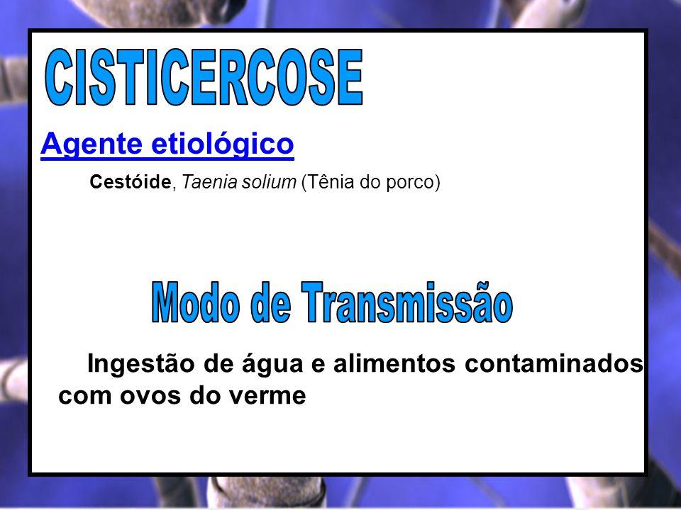 CISTICERCOSE Modo de Transmissão Agente etiológico