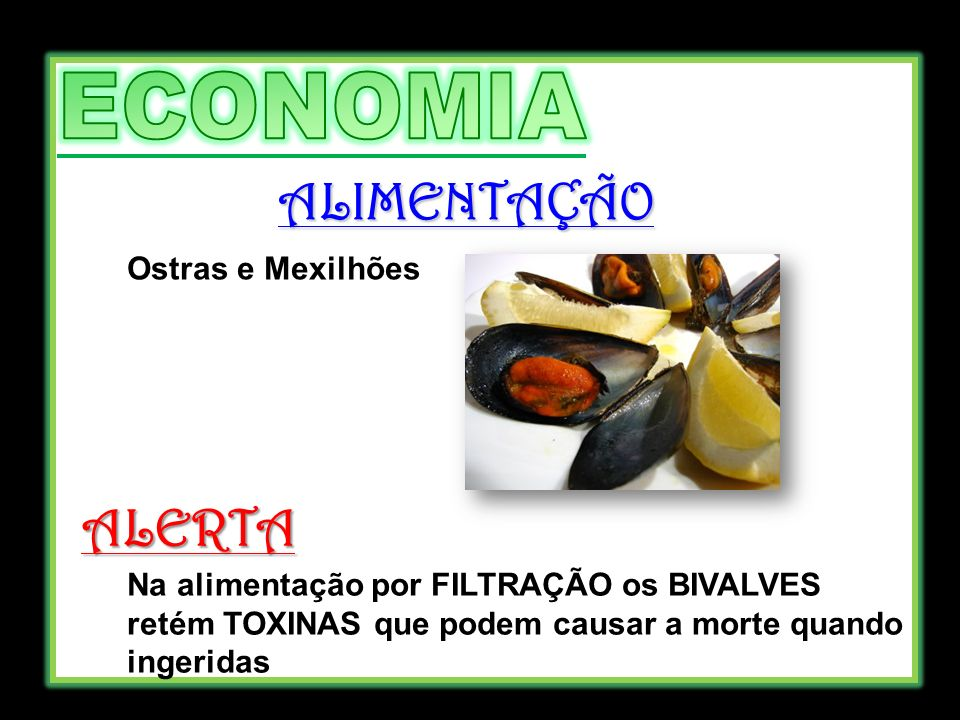 ALIMENTAÇÃO ALERTA ECONOMIA Ostras e Mexilhões
