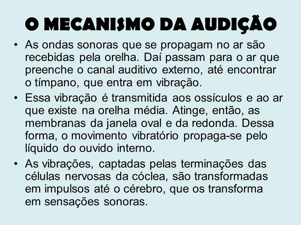 O MECANISMO DA AUDIÇÃO