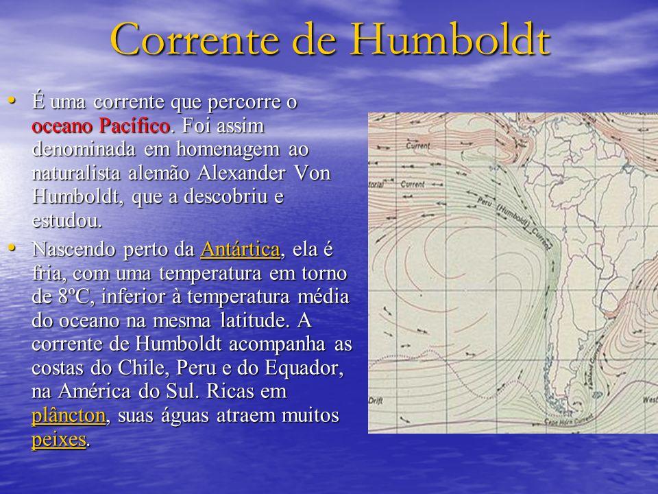 Corrente de Humboldt