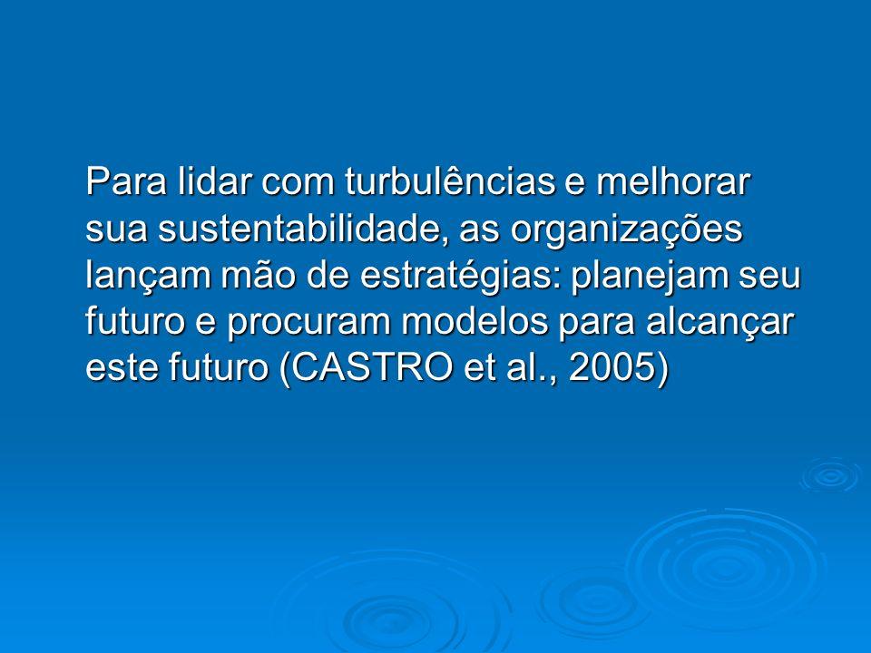 Para lidar com turbulências e melhorar sua sustentabilidade, as organizações lançam mão de estratégias: planejam seu futuro e procuram modelos para alcançar este futuro (CASTRO et al., 2005)