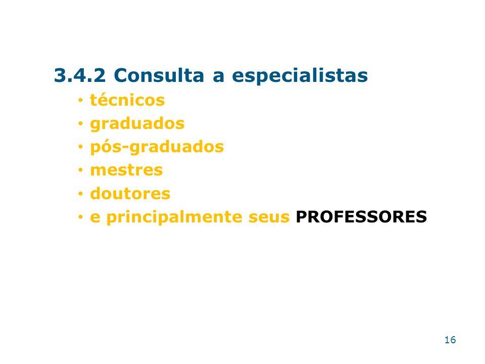 3.4.2 Consulta a especialistas