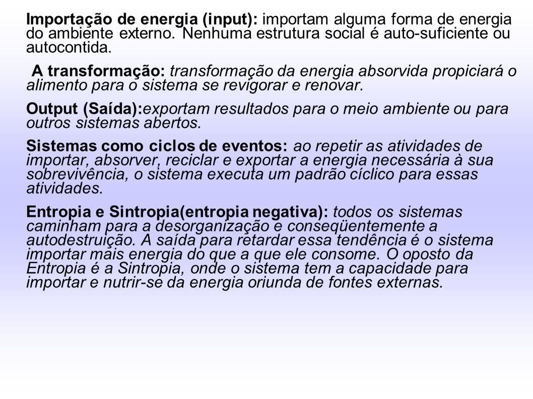 Importação de energia (input): importam alguma forma de energia do ambiente externo. Nenhuma estrutura social é auto-suficiente ou autocontida.