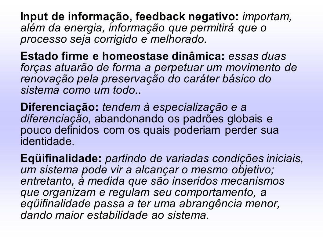 Input de informação, feedback negativo: importam, além da energia, informação que permitirá que o processo seja corrigido e melhorado.