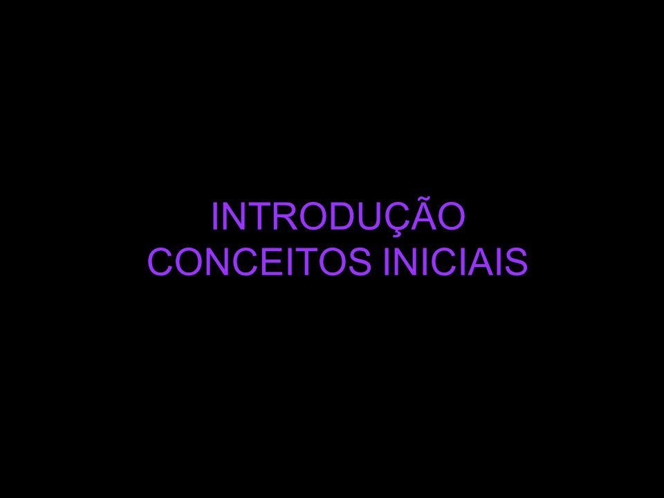 INTRODUÇÃO CONCEITOS INICIAIS