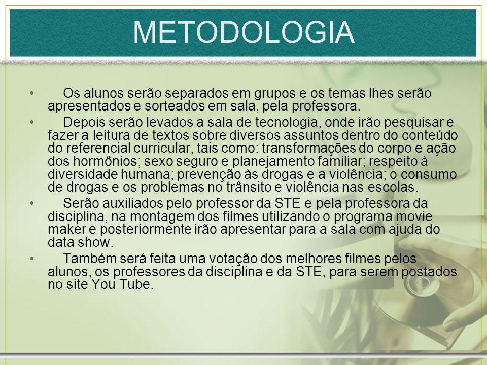 METODOLOGIA Os alunos serão separados em grupos e os temas lhes serão apresentados e sorteados em sala, pela professora.