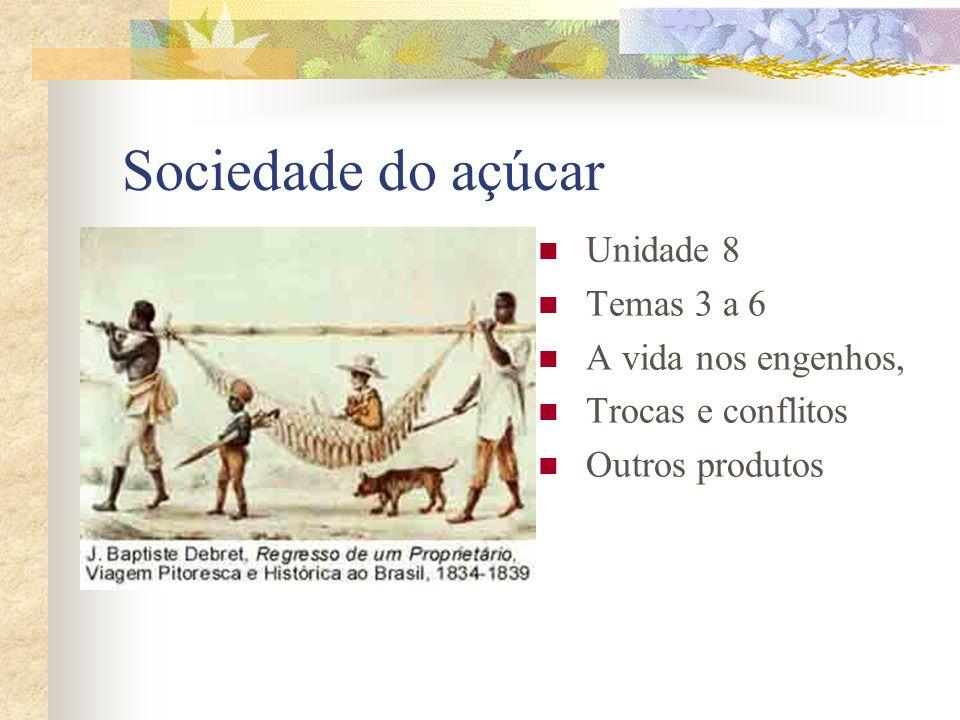 Sociedade do açúcar Unidade 8 Temas 3 a 6 A vida nos engenhos,