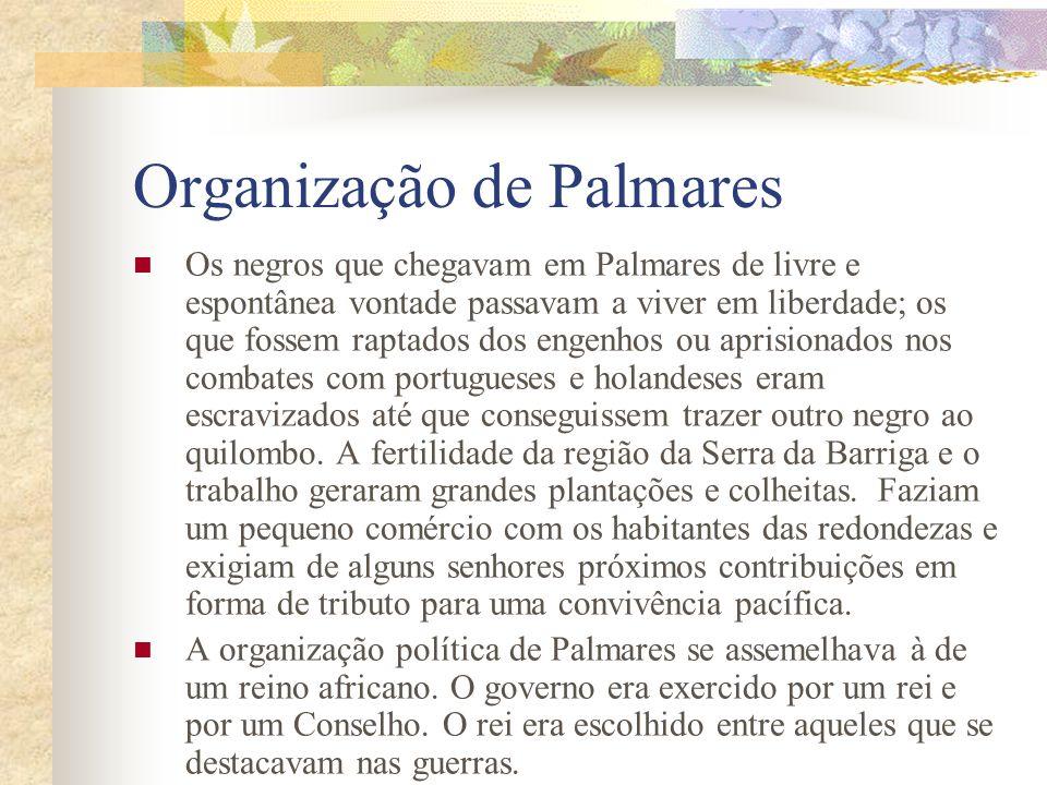 Organização de Palmares