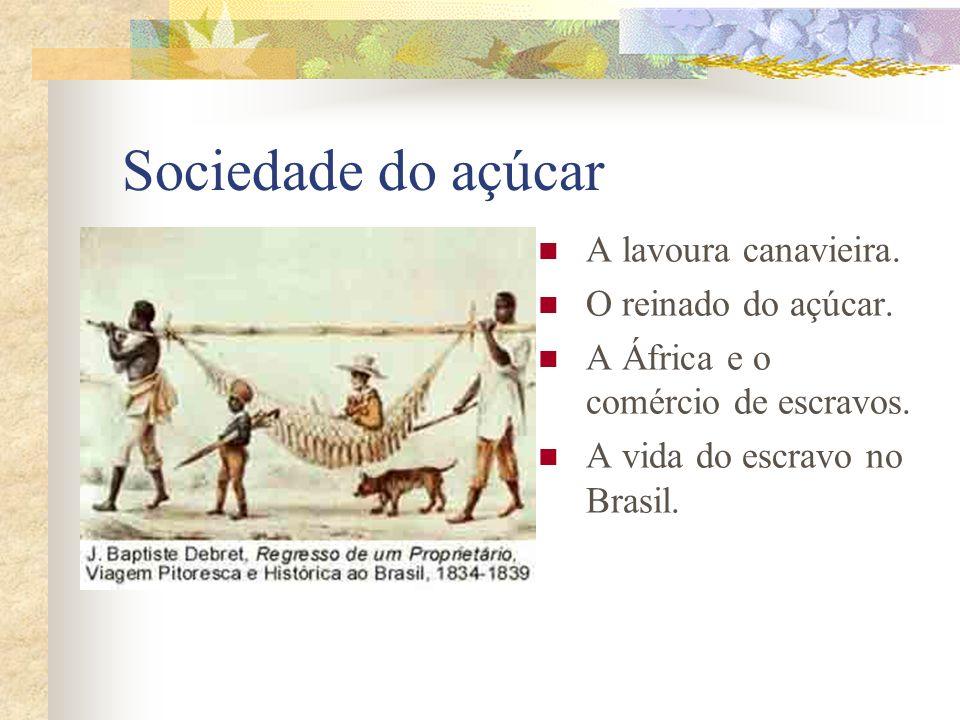 Sociedade do açúcar A lavoura canavieira. O reinado do açúcar.