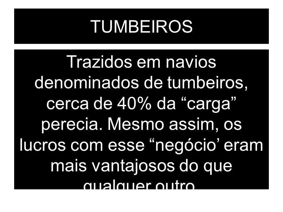 TUMBEIROS