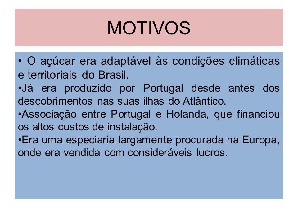MOTIVOS • O açúcar era adaptável às condições climáticas e territoriais do Brasil.