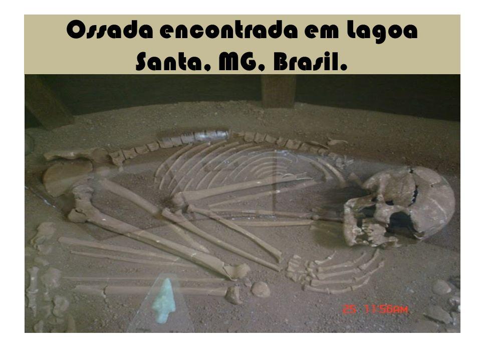Ossada encontrada em Lagoa Santa, MG, Brasil.