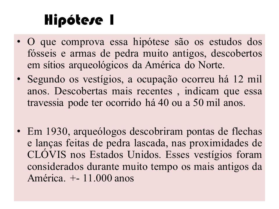 Hipótese 1